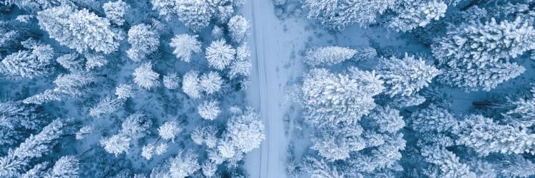 mestruazioni inverno